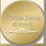 Divine Lotusについて
